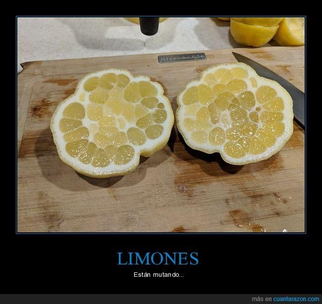 limón,mutante,wtf