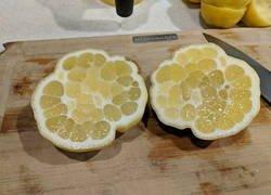 Enlace a ¿Se supone que es un limón?