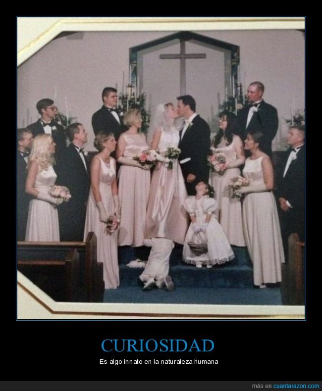 boda,falda,niño,wtf