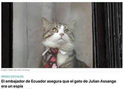 Enlace a El gato espía de Assange