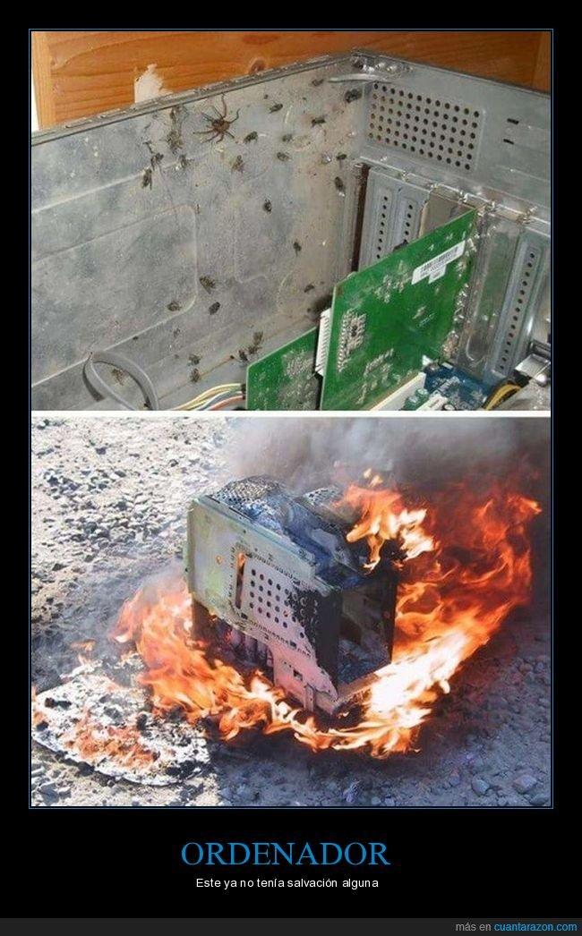 arañas,fuego,ordenador