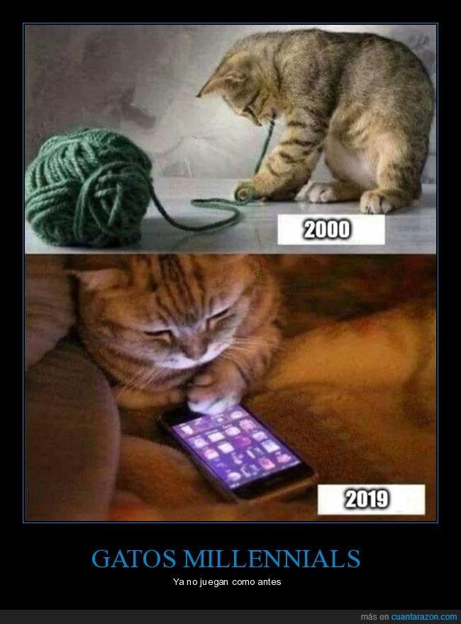 ahora,antes,gatos,móvil,ovillo