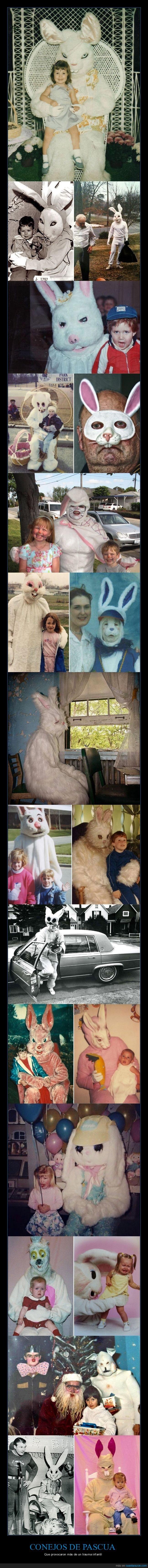 conejos de pascua,disfraces,miedo