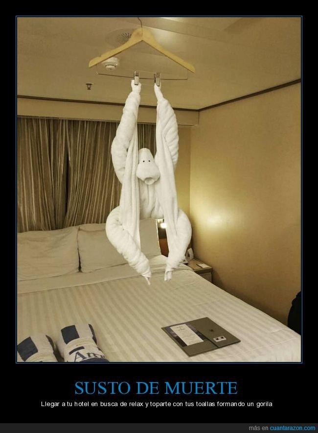 gorila,habitación,hotel,toallas