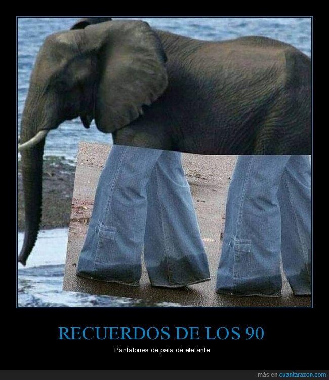 elefante,pata,tejanos