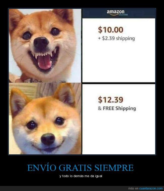 costes de envio,envio gratis,perro