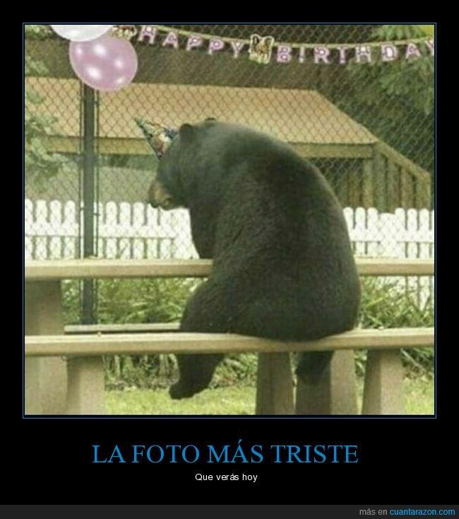 cumpleaños,oso,solo,triste