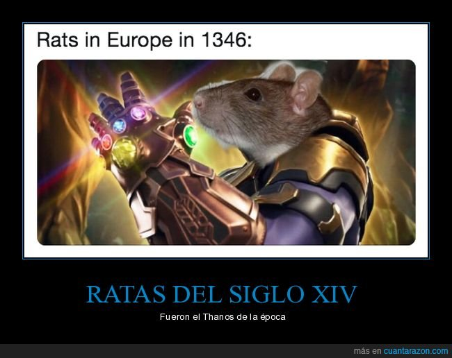1346,europa,peste,ratas,thanos