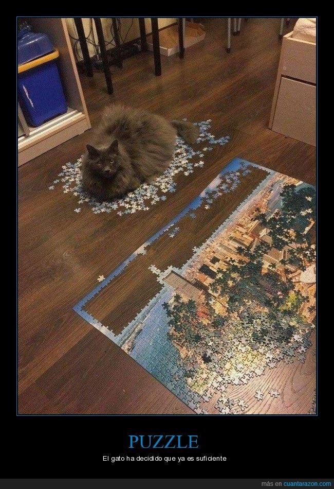 gatos,piezas,puzzle