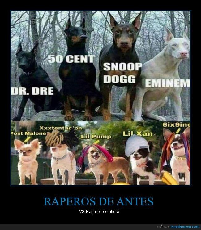ahora,antes,perros,raperos