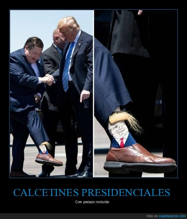 calcetines,donald trump,pelo,políticos
