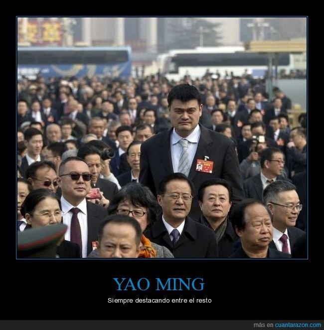 destacando,estatura,yao ming