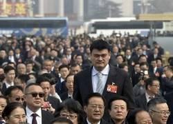 Enlace a Yao Ming entre la multitud