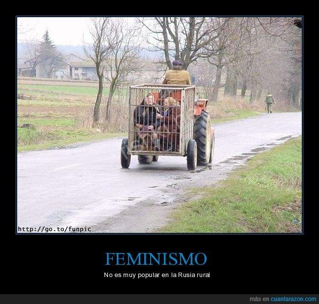 feminismo,jaulas,rusia,rusos,señoras