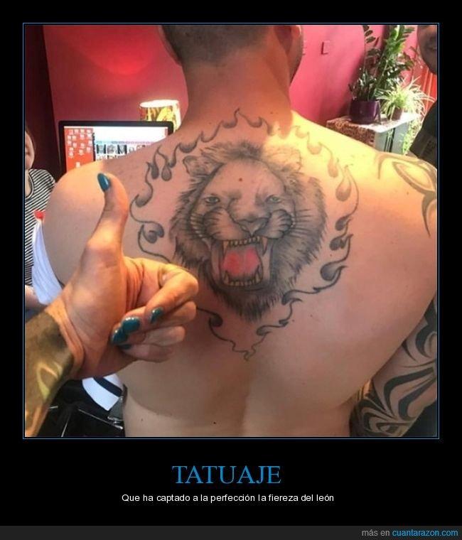 fails,león,tatuaje