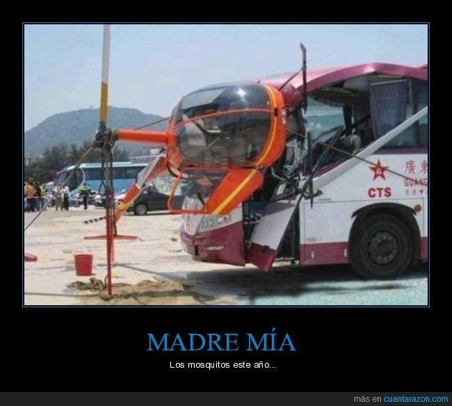 autobús,helicóptero,mosquitos,wtf