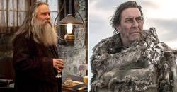 Enlace a Actores que interpretaron personajes en ambas series de Juego de Tronos y Harry Potter