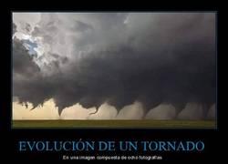 Enlace a Mostrando cómo cambia un tornado en la vida real