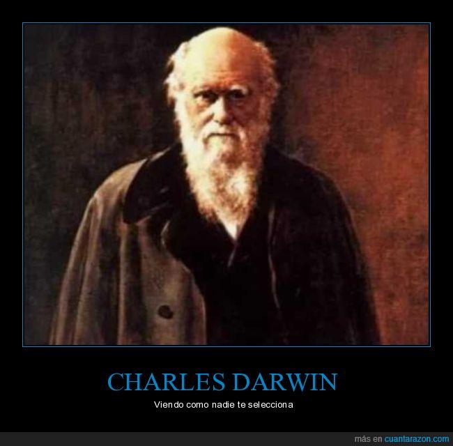 darwin,selección natural,seleccionar