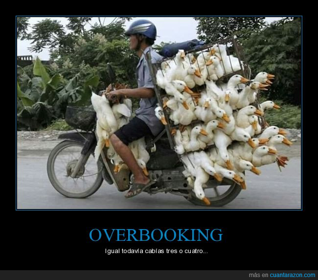 moto,overbooking,pato,patos,wtf