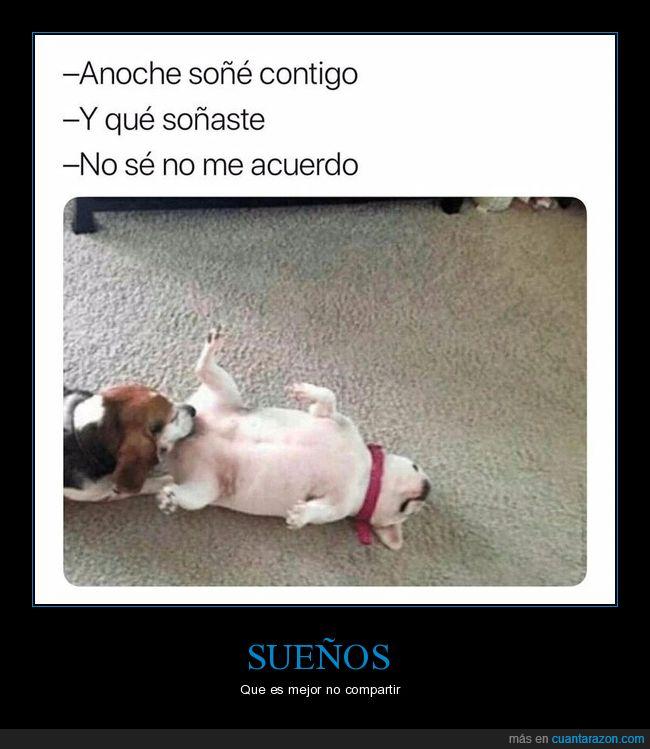 perros,soñar