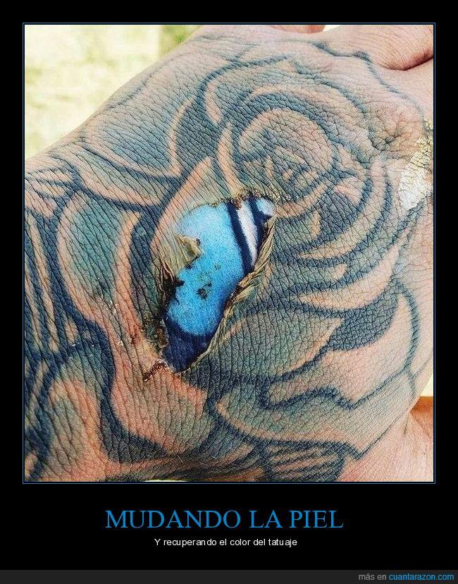 mudando,piel,tatuaje