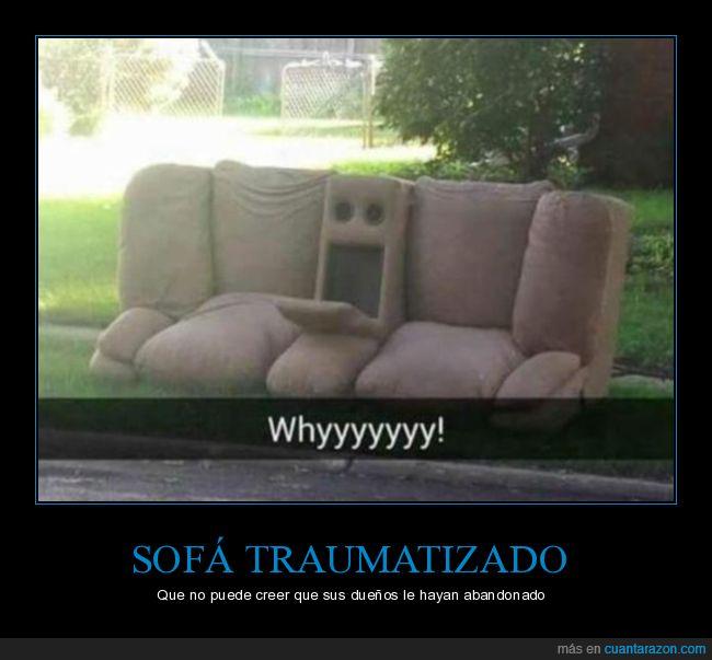 cara,sofá,traumatizado,wtf