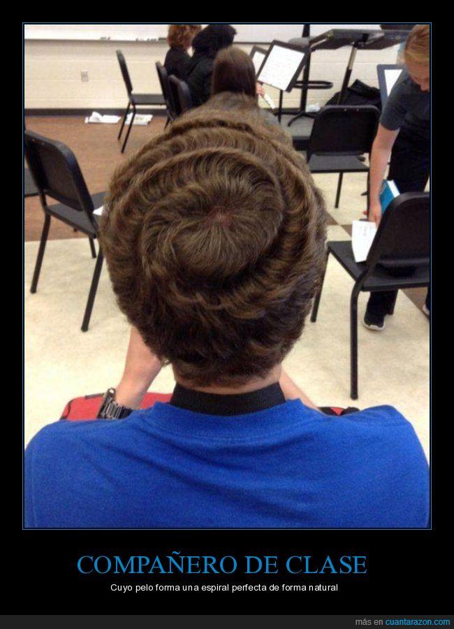clase,compañero,espiral,pelo