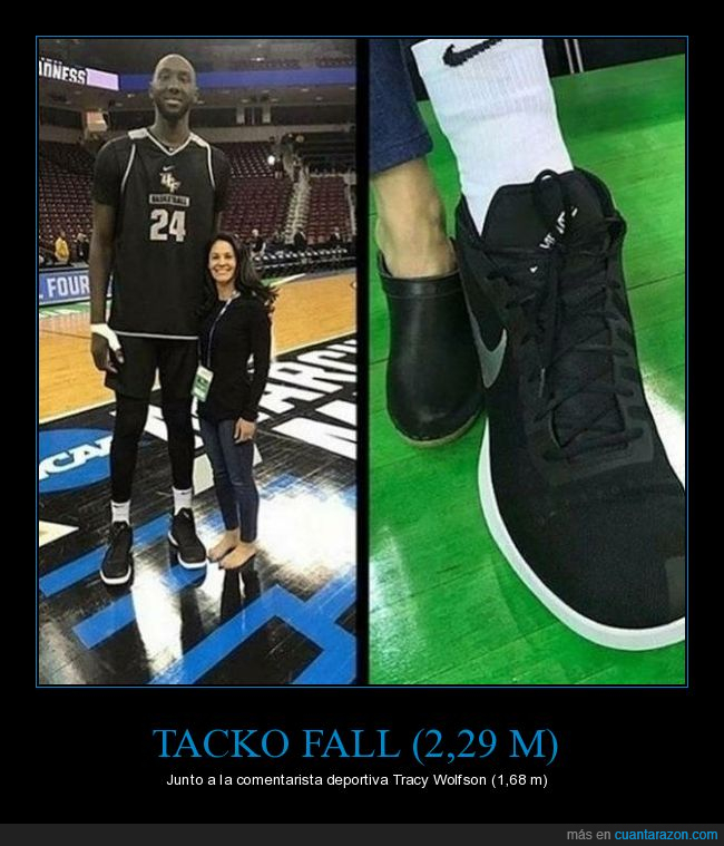 comparativa,estatura,pies,tacko fall,tracy wolfson