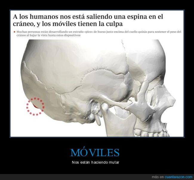 cráneo,espina,móviles,wtf