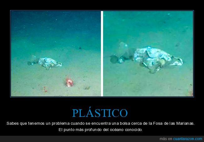 bolsa,fosa de las marianas,plástico,wtf