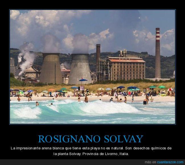 arena,central nuclear,desechos químicos,italia,rosignano solvay