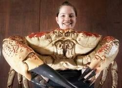 Enlace a El cangrejo más grande del mundo