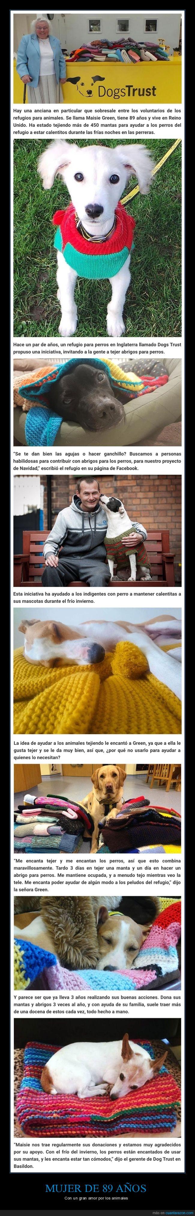 mantas,perros,refugio,señora,tejer