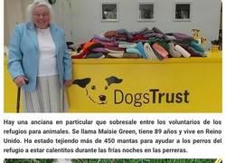 Enlace a Esta mujer de 89 años ha tejido 450 mantas para los perros de un refugio