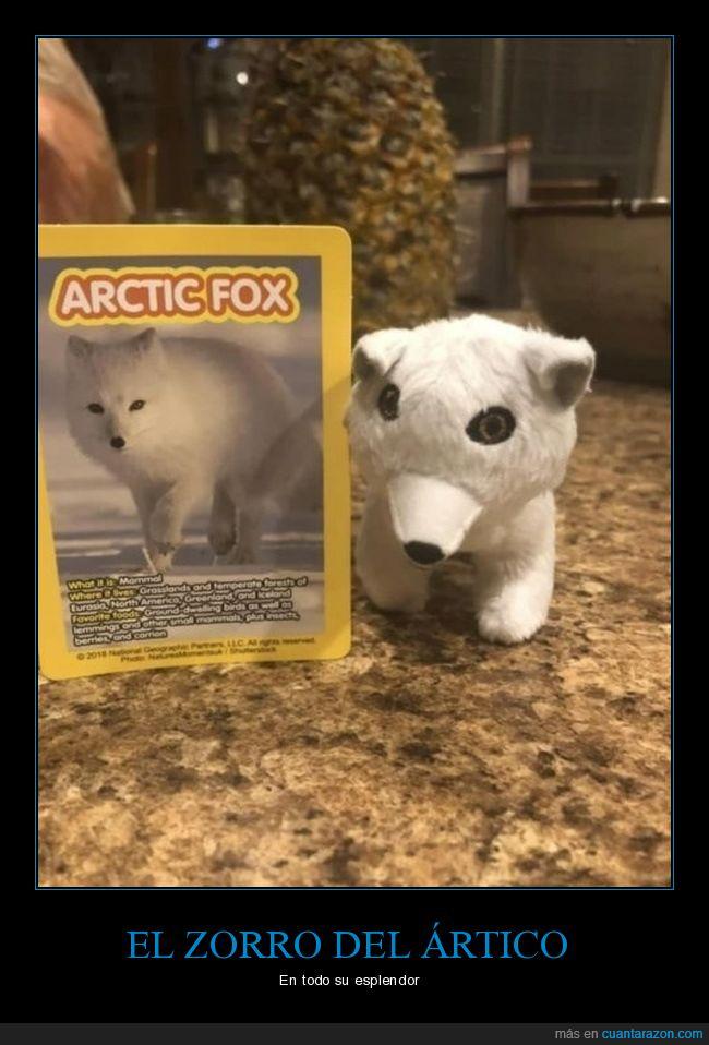 mierder,muñeco,wtf,zorro del ártico