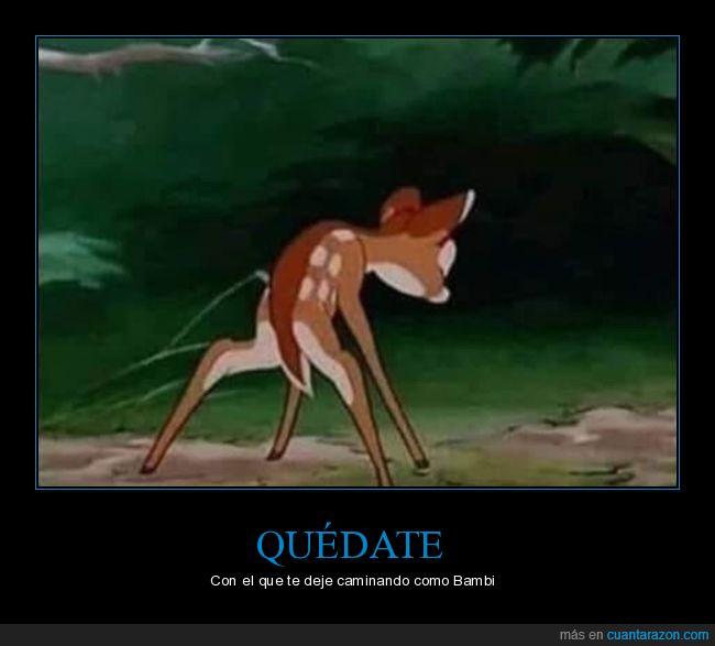 bambi,caminando,dejar,quedarse