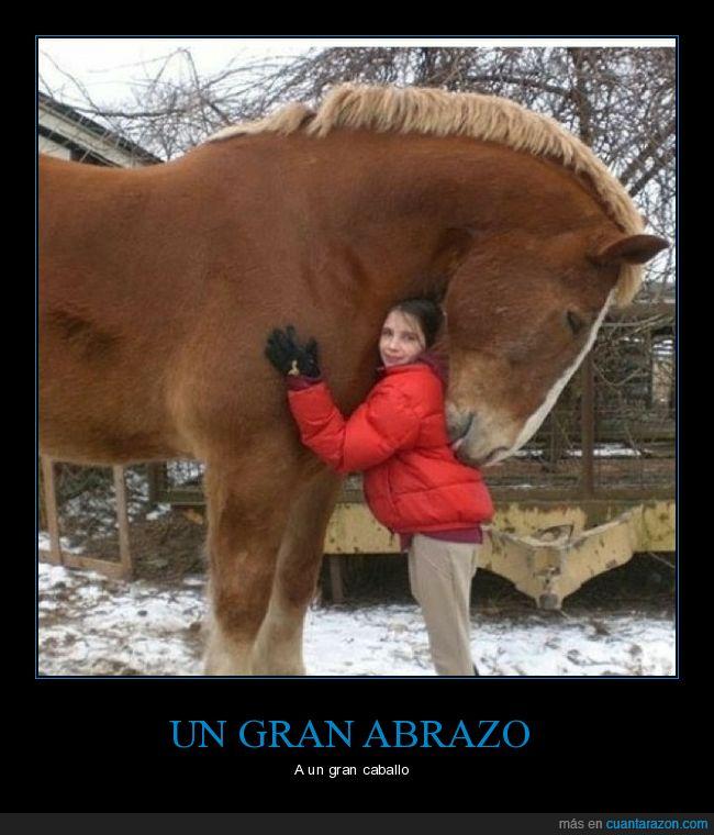 abrazo,caballo,gigante