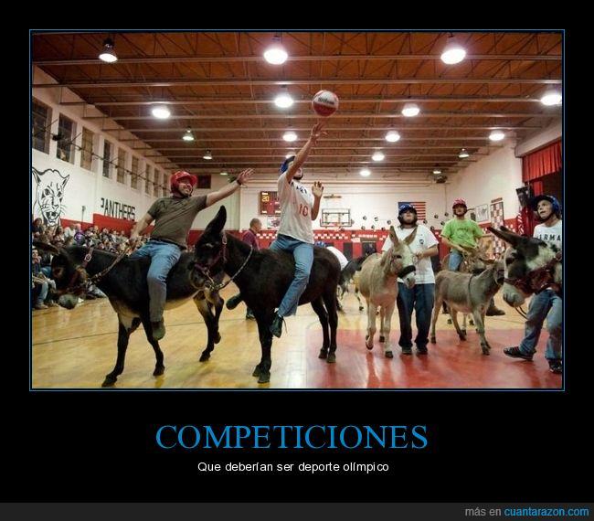 burros,deporte,wtf