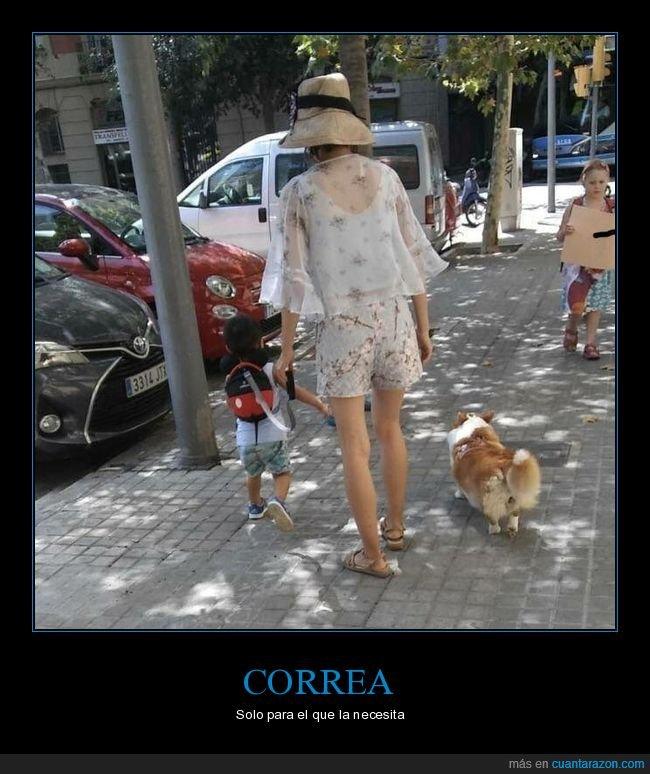 correa,hijo,madre,niño,perros,wtf