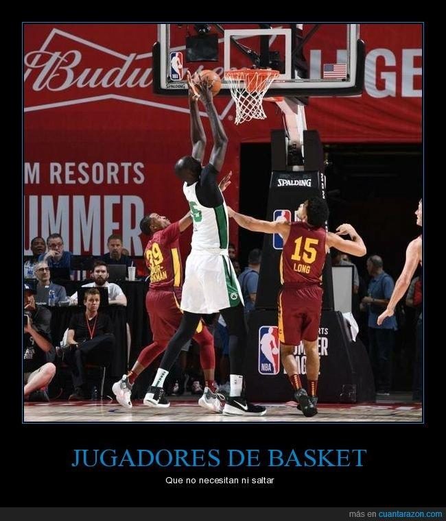 alto,baloncesto,estatura,wtf