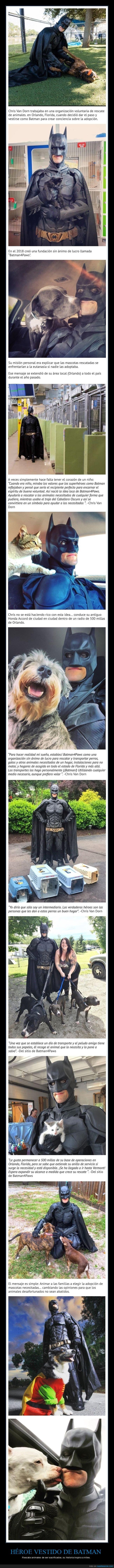 animales,batman,eutanasia,héroe