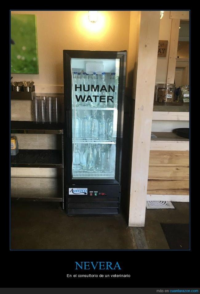 agua,humanos,nevera,veterinario