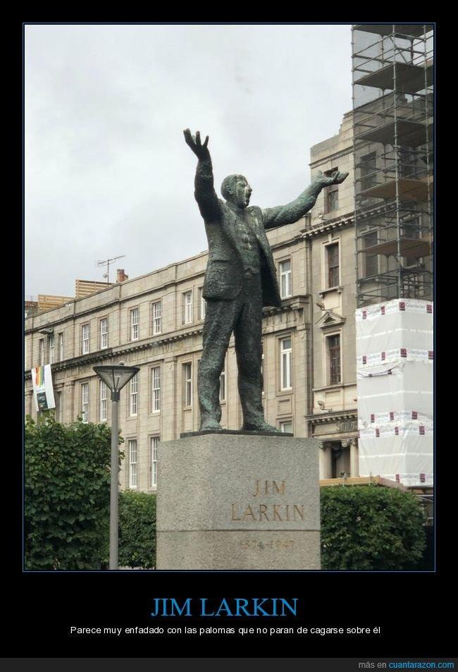 cagarse,enfadado,estatua,jim larkin,palomas