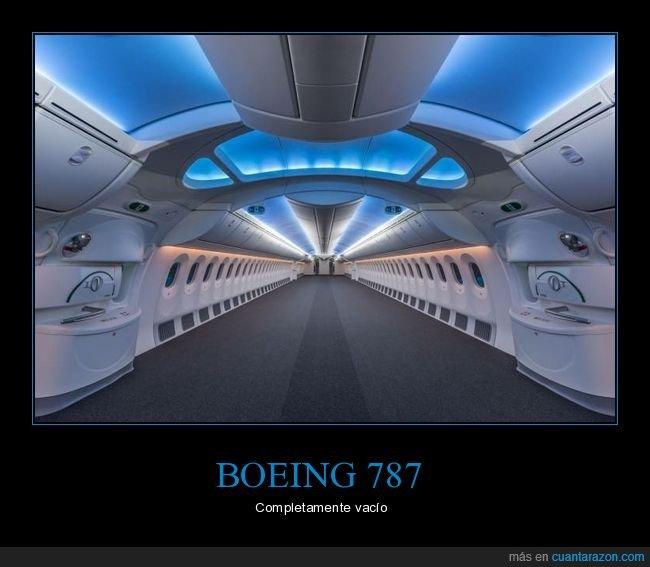 avión,boeing 787,vacío