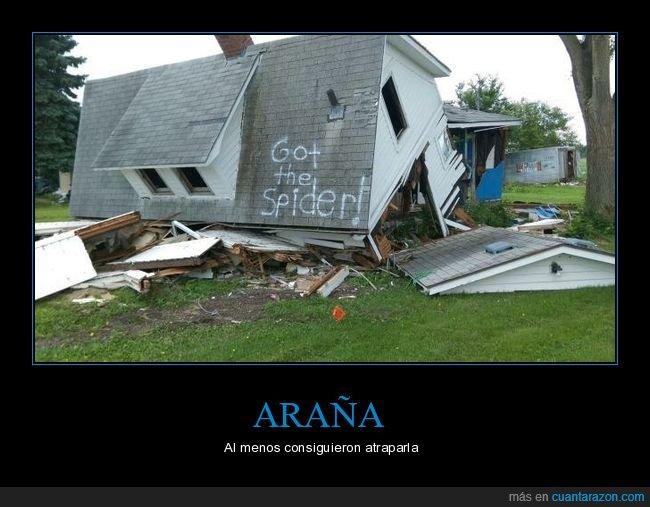 araña,casa,destrozada,pintada