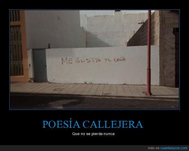 gustar,pintada,poesía callejera