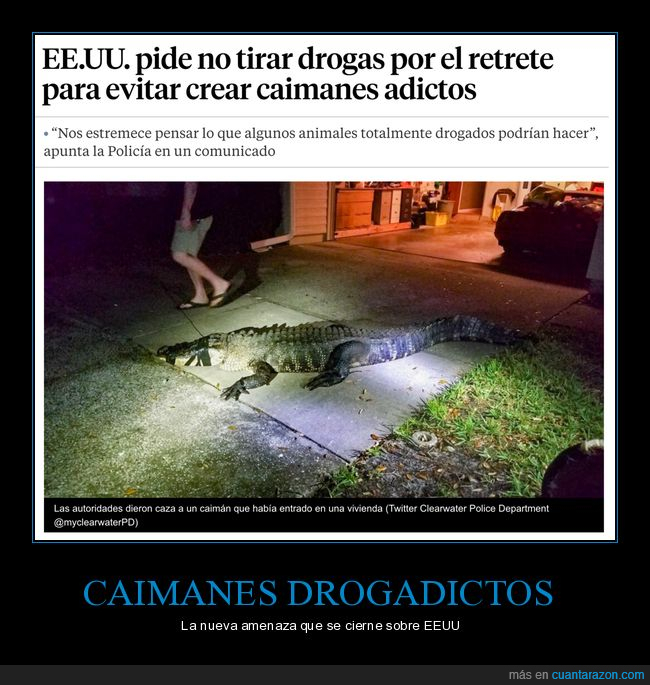 caimanes,drogadictos,drogas,tirar,váter,wtf