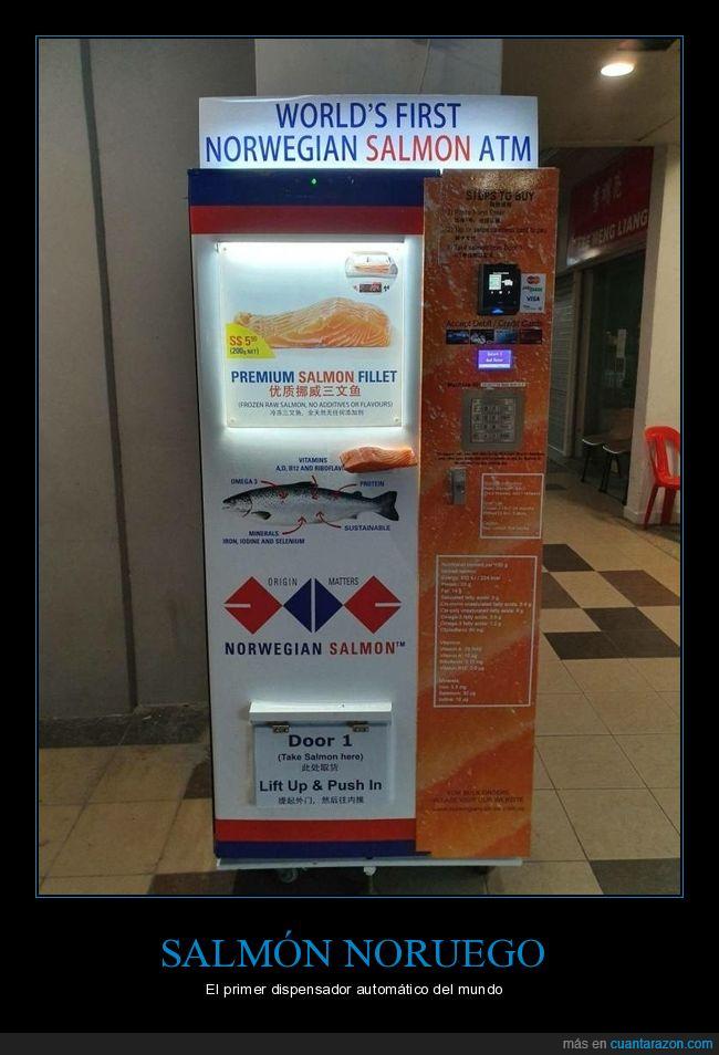 dispensador automático,salmón noruego,wtf
