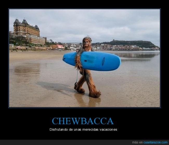 chewbacca,disfrz,playa,star wars,surf